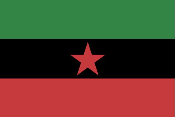 Flag_ChDKZ.jpg