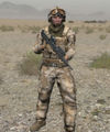 Arma2 BAF crew.jpg