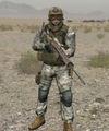 Arma2 US DF marksman.jpg