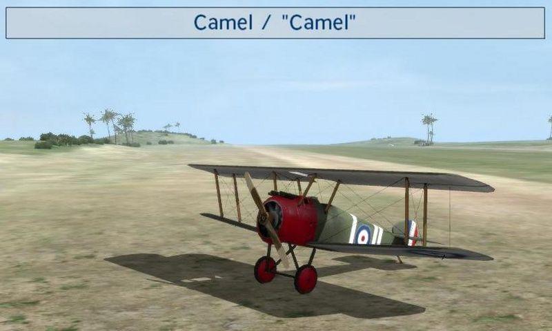800px-Camel.jpg