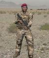 Arma2 BAF officer.jpg